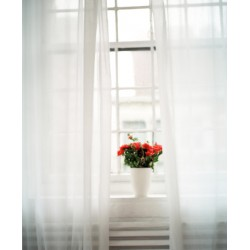 Curtain Curtain Etamin White