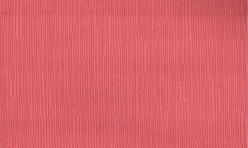 rosa palo 19